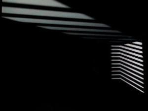 Night through blinds
