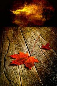 Autumn Storm by Veikko Suikken