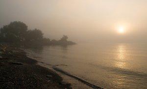 Fog and Sunshine Georgia Mizuleva