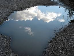 Sky in puddle