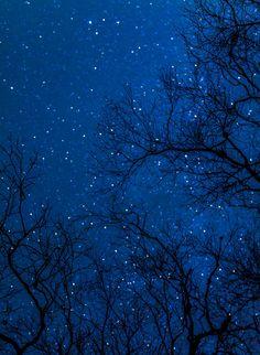 blue-star-night-image
