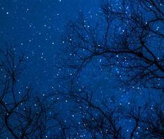 blue-star-night-image